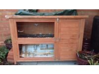 Guinea pig hutch. Good condition