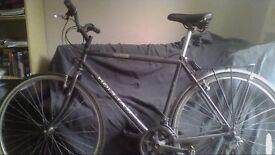Raleigh Jaguar pioneer Bike
