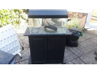 "Fish Tank ( 24"" x 12""x 12"" ) complete with stand"