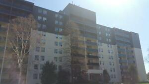 New & Beautiful Units 1 Bedroom Units **HYDRO INCLUDED** Peterborough Peterborough Area image 2
