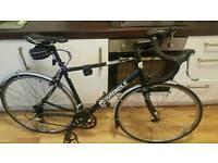 Pinnacle sentinal 1.0 racing bike