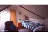 Large single loft room in family home. Monday-Friday only.