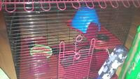 hamster cage and all necessities - make an offer