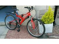 "Trax adult mountain bike 24"""