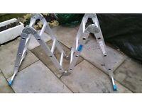 12 rung foldy-uppy aluminium ladder... only had light domestic use; its mums!
