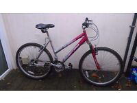 Woman mountain bike