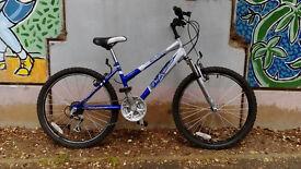 Blue Lagoon Professional Mountain Bike