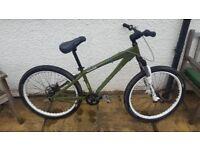 Custom Built Mongoose Thunderball Dirt Jump Bike