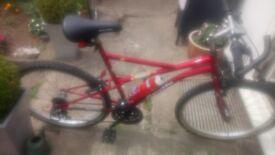 Men's Apollo manic y frame style mountain bike