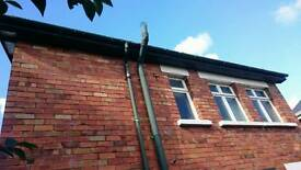 Wanted - Gutters and facias painted
