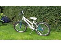 Girls Mountain Bike. Raleigh £35 near Malton