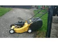 Dynamic lawnmower