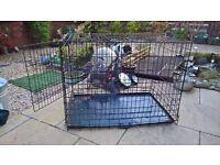 Black large dog cage