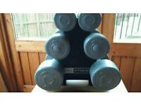 Set of dumbbell weights with stand
