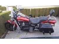 Harley fat bob very good bike