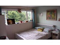 Double room in Heaton townhouse