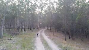 I'm in search of bush block/acreage in Hunter Region Cessnock Cessnock Area Preview