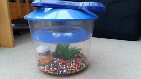 Goldfish Bowl Starter Kit