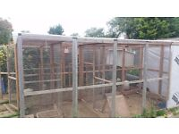 Huge aviary for sale