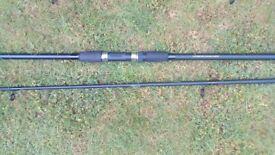 Beginners carp rod