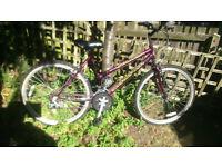 Bike for sale-----