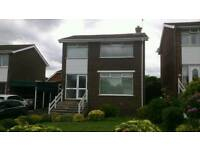 Detached house Chippendale Bangor £700/month including rates available from 1st Aug