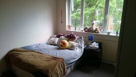 Large double room to rent in Sudbury