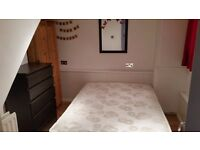 cozy double room to rent in nice flat with garden