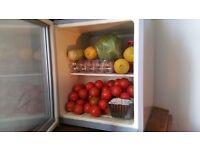 fridge 50L