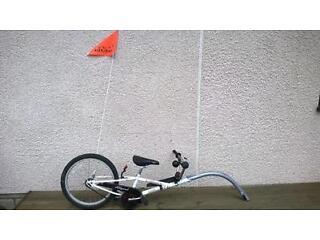 Allycat AC100 Trailer Bike