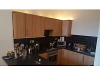 Lovely double room for professional - £450pm