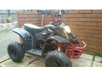 110cc Thunder Cat Quad Bike