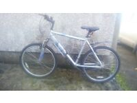 Good Bicycle forsale