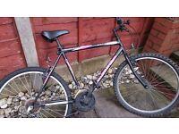 Mens 15 speed mountain bike.