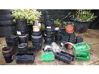 Over 120 assortment of plant pots