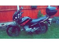 YAMAHA YBR 125 - 2013, 2900 MILAGE, MINT CONDITION