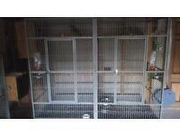 Rainforrest parrot cage