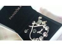 charm bracelet and charms like pandora- costume jewelry