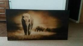 Large Canvas Print / Picture