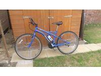 Ladies Apollo Bicycle