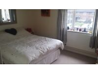 A Perfect Double Room in Hackney Area