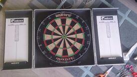Darts. Dartboard and mat