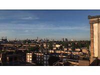 Double room, Short term Let (4-6 Month), Clapham Junction/Common, Private Rooftop, Car Parking