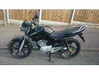 Yamaha YBR 125 2011 Excellent Condition HPI Clear