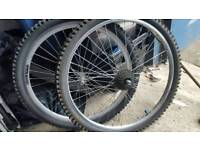 Mountian bike wheels front and rear