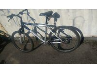 BIKE GIANT ROCK MOUNTAIN BICYCLE 21 SPEED 26 INCH WHEEL AVAILABLE FOR SALE