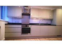 Brand New One Bedroom Flat in Epsom for rental