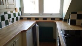Cleaning service in Wood Green | N22