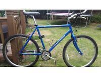 Gents raleigh mountain bike