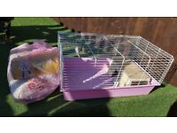 Indoor pet cage suitable for guinea pig or rabbit free to collector